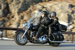 Harley-Davidson Road King 1601310483w (gparet) Tags: road bridge couple curves scenic couples motorcycles bearmountain motorcycle overlook windingroad twisties goatpath goattrail