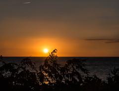 North Cape May Sunset.. Feel the Heat (Daveyal_photostream) Tags: ocean nightphotography sunset sea sky sunlight motion beach nature beautiful beauty leaves silhouette newjersey movement nikon serene sunsetting d600 nikor mycamerabag mygearandme meandmygear