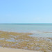 Beach on the Gulf of Tadjoura