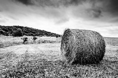 hay bundle (Octav Bobe) Tags: autumn trees sky bw monochrome field grass clouds fan outdoor harvest romania hay bundle dramaticsky depth lowperspective capita haybundel