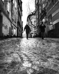 Following (emiliakrolik) Tags: street city square sweden stockholm squareformat gamlastan inkwell iphoneography instagramapp uploaded:by=instagram