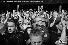2016 Bosuil-Het publiek bij The Paladins en Cats on the Corner 16-ZW