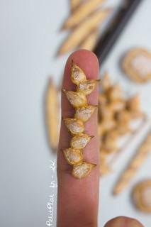 Miniature Baguette Epi