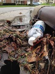 """I prefer the bottled stuff,"" said the storm drain. (dankeck) Tags: rain aquafina sewer waterbottle"