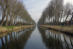 Cycle ride to Damme (steven.kemp) Tags: reflection tree water windmill bike canal ride belgium brugge cycle bruges damme