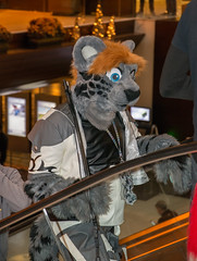 _DSC8903 (Acrufox) Tags: midwest furfest 2015 furry convention december hyatt regency ohare rosemont chicago illinois acrufox fursuit fursuiting mff2015