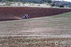 Labour de printemps (Nito43) Tags: field case terre labour printemps champ tracteur ih volcan ploughing charrue hauteloire lemken
