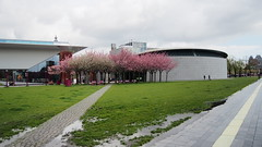 P4280731 () Tags: holland amsterdam museumplein