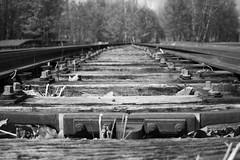 DSC_0190 (gero.skorne) Tags: essen kohle unesco nrw schwarzweiss industrie ruhrgebiet zollverein zeche ruhrpott welterbe industriekultur bergbau steinkohle