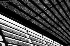 Behind shadow bars (Kindallas) Tags: street light shadow brazil sun white black lines canon concrete 50mm gate floor geometry sombra t5 form behind paulo são geometria