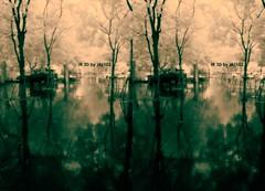 IMG_20150626_110028_4 (zkj102) Tags: city tree rain ir 3d cityscape shanghai stereo infrared htconex