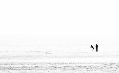 Jump (Georgie Pauwels) Tags: dog white beach public coast jump play candid minimal fujifilm moment