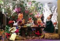 Alice in Wonderland .. (Ryan Lemos) Tags: christmas light india decoration story bombay mumbai windowdisplay fairytales aliceinwonderland damian bandra 2015
