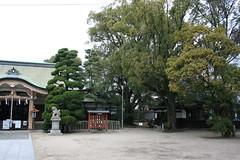Osaka - New Year's '15-16