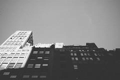 Midtown: Between the Shadows & the Light (Juni Safont) Tags: nyc newyorkcity light shadow blackandwhite bw monochrome manhattan grain midtown phonecamera upward