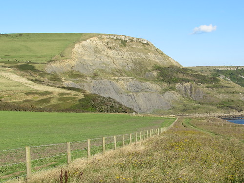 Dorset Coast Path between Kimmeridge and Chapman's Pool (Dorset)