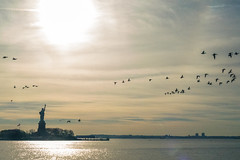 lady liberty with geese (Visual Thinking (by Terry McKenna)) Tags: park liberty state nj