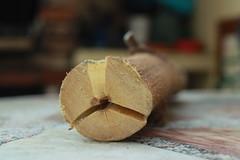 PEACE BROS (maikrofunky) Tags: tree 35mm canon arbol peace bokeh paz patio tronco oneshot poda notreatment 600d deadmoments