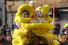 Yellow lion peeking (Tony Shertila) Tags: city england festival liverpool costume europe chinatown fiesta dragon britain lion chinesenewyear celebration merseyside dra