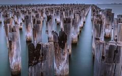 Princes Pier, Port Melbourne. (jenni 101) Tags: longexposure sea texture pier portmelbourne princespier oldtimbers impermancence