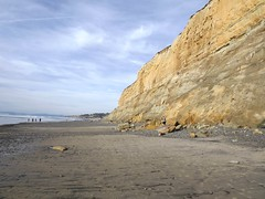 sea cliffs at Torrey Pines (h willome) Tags: ocean california beach torreypines sandiego torreypinesstatereserve 2016