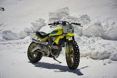 Ducati Scrambler Artika