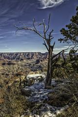 Grand Canyon 2016 (81 of 430) (mrmeliska) Tags: arizona grandcanyon northernarizona 2016 mikemeliskaphotographer