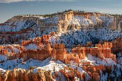 Winter color - Bryce National Park (CloudRipR) Tags: 500v20f ngc npc 1000v40f earthnaturelife