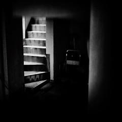 stairs (s_inagaki) Tags: street blackandwhite bw monochrome japan stairs tokyo bnw