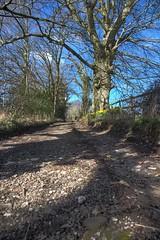 Welsh Lane