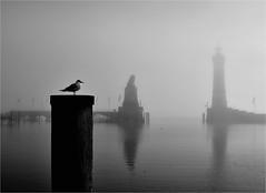 * (la_imagen) Tags: street blackandwhite bw fog blackwhite nebel lindau sw sis bodensee lakeconstanze siyahbeyaz lagodeconstanza streetandsituation lagodiconstanza laimagen lindauimbodensee