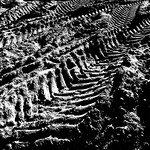 Tracks in grayscale thumbnail