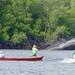 Protegiendo la Biodiversidad Marino-Costera