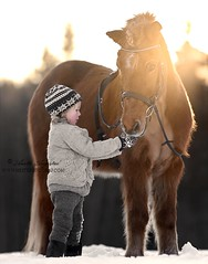 Matilde & Topper (Hestefotograf.com) Tags: horses horse oslo norway caballo cheval married welsh arabian justmarried cavalo pferd stallion canter equine equus paard darkhorse friesian purarazaespanol equinephotographer equinephoto hestefotograf