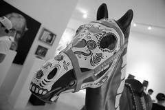 _JAM6006 (Jamil D750) Tags: horse art colors caballo nikon miami creative d750 muertos wynwood