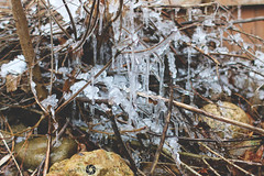 28/365 (JennaAbbottPhotography) Tags: ice 365 icicles 365day 365dayproject