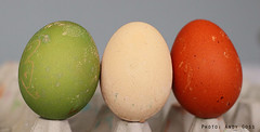 Irish Eggs (Andy_Goss) Tags: ireland irish easter happy well eggs colored wish coloured greeting tricolour