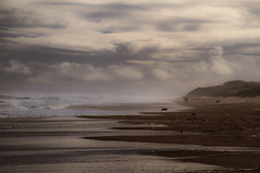 """a couple walk on the beach under soft clouds and sea mist at Sands of Forvie Nature Reserve, Aberdeenshire, Scotland (grumpybaldprof) Tags: sea sky sun sunlight seascape colour texture beach sunshine clouds landscape scotland sand aberdeenshire patterns north perspective estuary newburgh seamist softlight softclouds """"northsea"""" """"sandsofforvienaturereserve"""" """"ythanriver"""""""