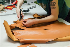 DSCF5135s (liseykina) Tags: bag reportage ante kovac