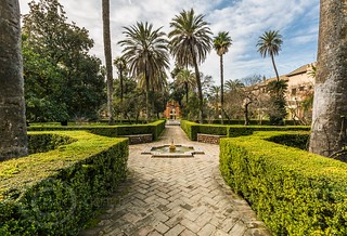 Seville Jan 2016 (8) 203 - Around and about the Royal Alcázar