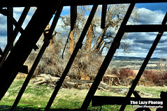 April 20 2016 - From inside the barn looking east (lazy_photog) Tags: barn photography ancient sleep falling lazy ten weathered aged wyoming elliott photog andersons collapsing 042016andersonsbarn