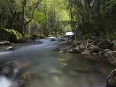 Belelle (nO_VR) Tags: espaa naturaleza nature ro forest river corua europa europe flickr paisaje olympus galicia galiza bosque nd omd ferrol narn belelle filtrond zuico filtrohoya olympusomd olympusomdem5markii em5markii