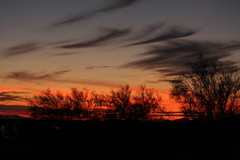 Arizona sunset (iatassi) Tags: sunset arizona cactus usa southwest nature desert wilderness northamerican arizonasunset northscottsdale iatassi iatassiphoto iatassihotmailcom copyrightiatassi