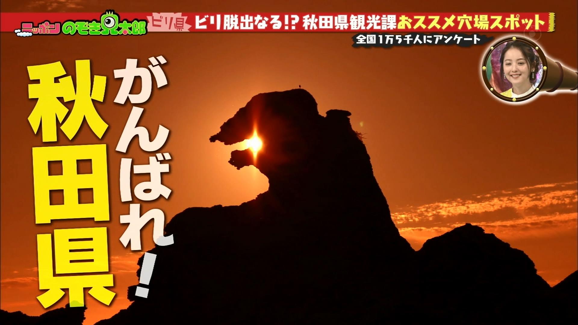 2016.04.26 全場(ニッポンのぞき見太郎).ts_20160426_213619.839