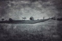 """""""Out beyond ideas of wrongdoing  and rightdoing there is a field. I'll meet you there.  When the soul lies down in that grass the world is too full to talk about.""""  - Rumi (michelle-robinson.com) Tags: blackandwhite bw painterly monochrome beautiful landscape photography countryside blackwhite australia illustrative textures smartphone ethereal adelaide dreamy local inspirational southaustralia visualart apps fineartphotography blackwhitephotography artphotography adelaidehills photoapps antiquelook mobilephotography phoneography michellerobinson procamera flickrelite iphonephoto shotwithiphone iphoneography iphonephotoapps shotoniphone 4tografie procameraapp smartphonephotography snapseed textureblendphotography michmutters stackablesapp southaustralianature shotoniphone6plus shotwithiphone6plus lobethalsouthaustralia"""