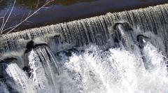 P1190810 (Rimager) Tags: water river waterfall dam fallingwater
