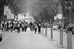 milano_marathon-0995