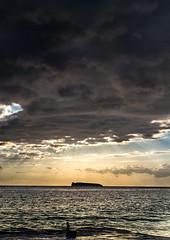 Big Beach SUnset (airinnajera) Tags: ocean nature hawaii nikon surf maui bodyboarding bigbeach d4s aaronnajera