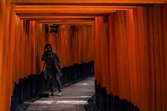 Japan (Enricodot ) Tags: street red orange japan tunnel tora streetphotographer enricodot