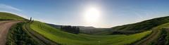 Cipressi Pano ([Rirri]) Tags: italy panorama verde nature colors canon landscapes italia natura val tuscany siena montalcino toscana valdorcia colori landascape dorcia panorami cipressi cipresso 100d